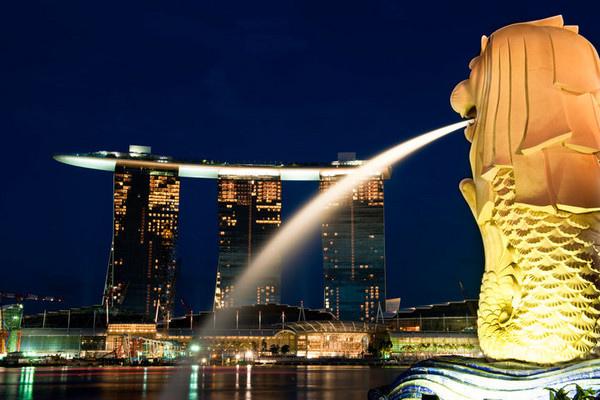 新加坡花場